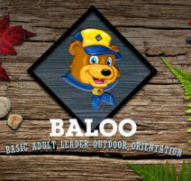 baloo.1